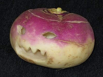 Halloween Fun Fact: The first Jack O�Lanterns were actually made from turnips.
