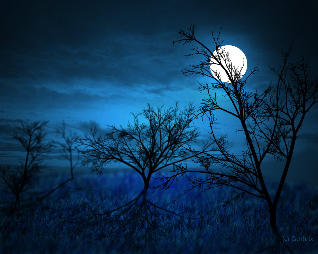 Halloween Fun Fact: It's actually very rare for a full moon to occur on Halloween.  Although, it's predicted to occur on 10/31/2020.