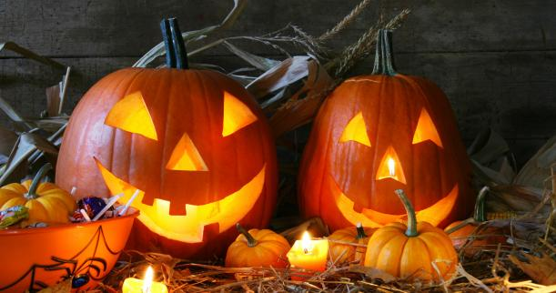 Halloween Fun Fact: About 99% of all pumpkinds sold are used as Jack 'O Lanterns for Halloween.